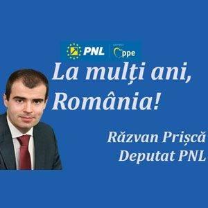 Razvan Prisca